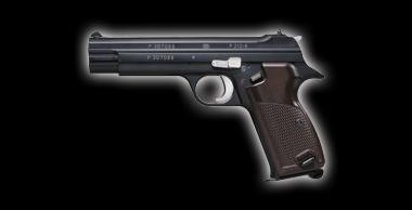 SIG P210-6