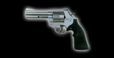 S&W M686 X-cartridge Silver